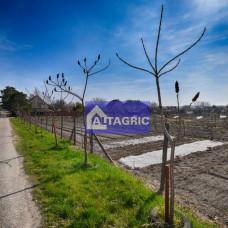 3227 - Na predaj pozemok vhodný na výstavbu rodinného domu v Moči 990 m2